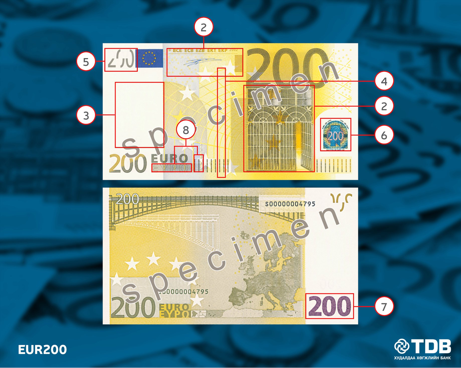 Security Features On Euro Notes Presented By Financial Safety For